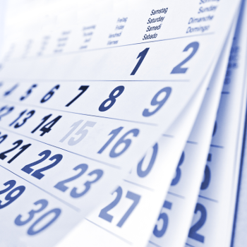 dental annual checkup service